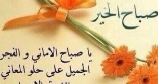 بالصور كلمات صباحية للاصدقاء , صباح الخير يا صديقى 854 11 310x165