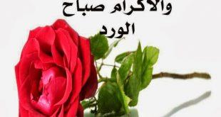 بالصور رسالة حب صباحية , اجمل مسجات حب صباحية 973 11 310x165