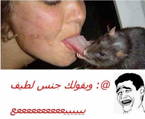 بالصور صور فيسبوك مضحكة , اجدد صور مضحكه للفيس 135 11