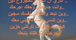 بالصور شعر فراق , ابيات شعر عن الفراق 2030 11 310x165