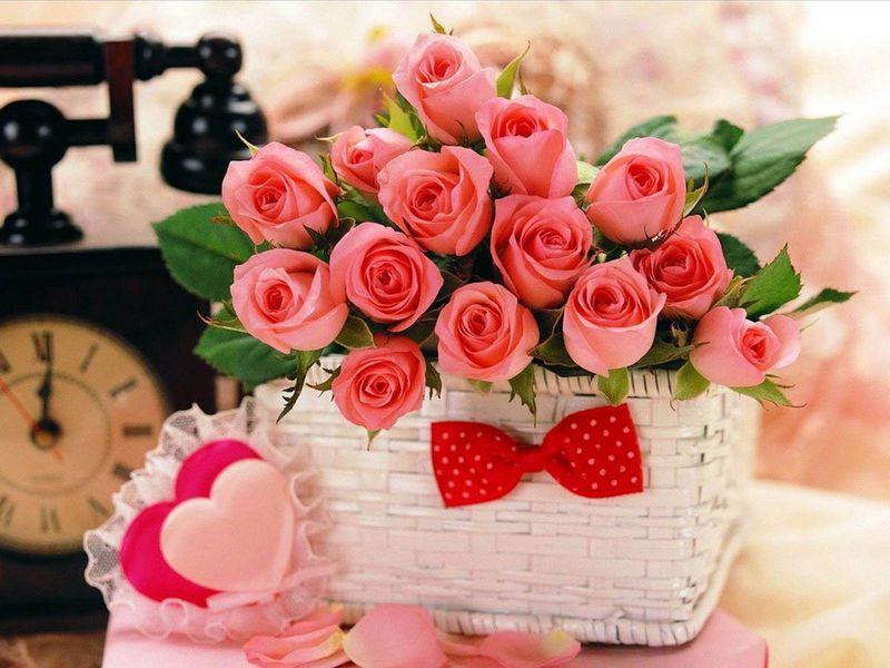 بالصور ورود الحب , ورده الحب الصافي 2182 6