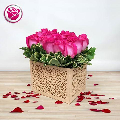 بالصور ورود الحب , ورده الحب الصافي 2182 8