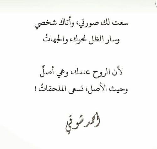 بالصور شعر احمد شوقي , جولة سريعة في دواوين امير الشعراء 2874 14