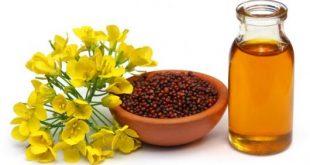 صوره علاج الربو بالاعشاب , وصفة عشبية للتخلص من حساسية الصدر المزمنة