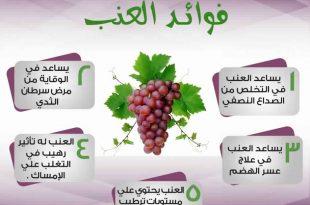 بالصور فوائد العنب , مميزات فاكهة العنب 3549 3 310x205