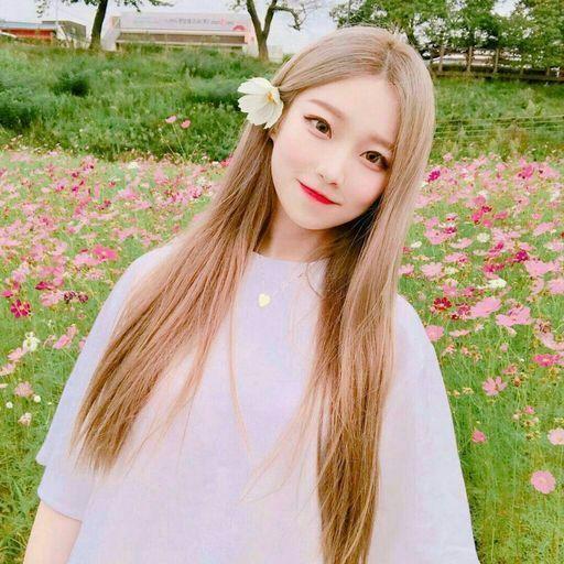 بالصور اجمل بنات كوريات في العالم , ملكات جمال كوريا 3553 2