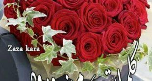 صور كلمات من ورود , عبارات جميلة من الورد