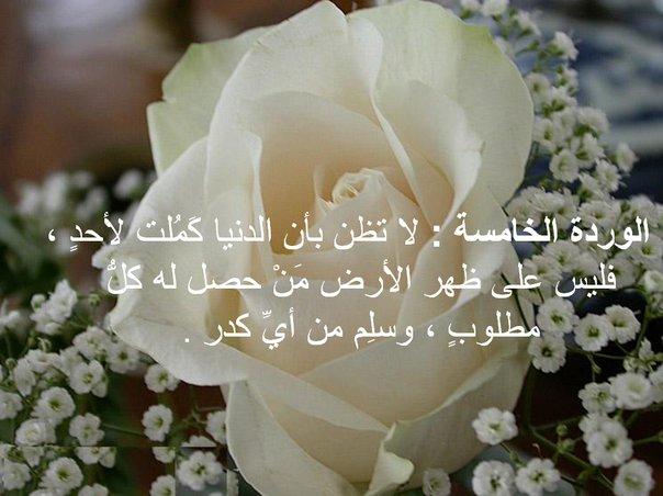 بالصور كلمات من ورود , عبارات جميلة من الورد 3582 8