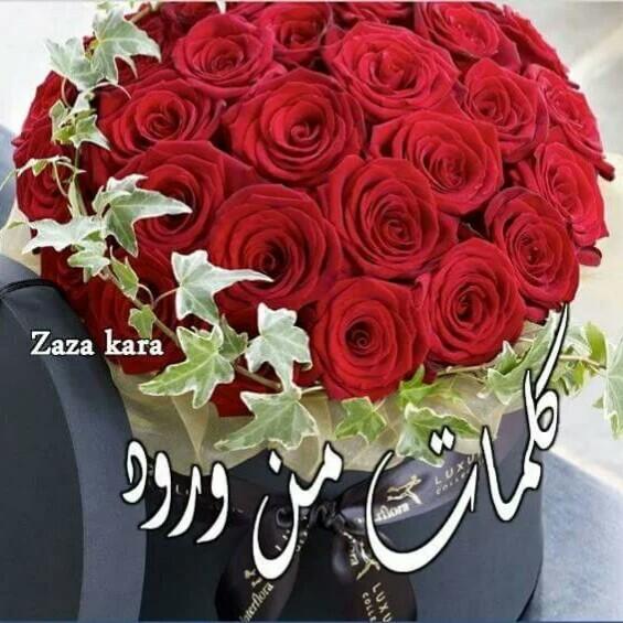صوره كلمات من ورود , عبارات جميلة من الورد