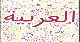 صورة معلومات عن اللغه العربيه , تفاصيل دقيقة عن اللغة العربية