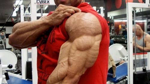بالصور تمارين كمال اجسام , رياضة تكوين العضلات 3703 2