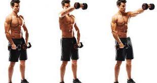 بالصور تمارين الكتف , افضل تمارين عضله الكتف 6411 2 310x165