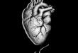 بالصور قلبي معك , صور عليها عبارات قلبي معك 6430 2 110x75