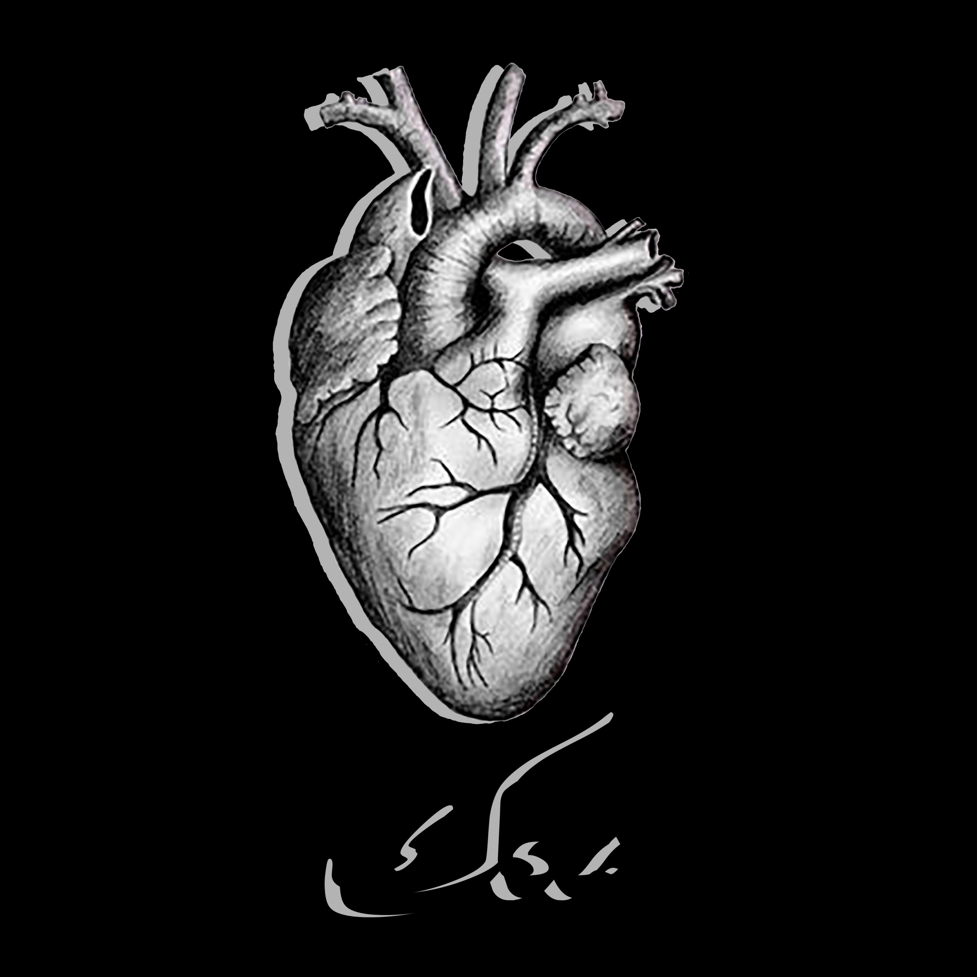 بالصور قلبي معك , صور عليها عبارات قلبي معك 6430