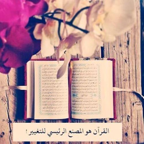 بالصور خلفيات قران , صور جميله لكتاب الله العزيز 6499 6