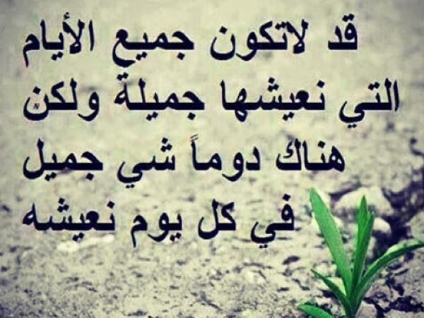 بالصور حكمة الصباح , حكم ومواعظ للصباح 6502 4