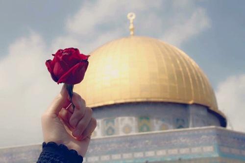 بالصور صور عن فلسطين , صور جميله معبره عن فلسطين 6590 10