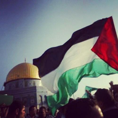 بالصور صور عن فلسطين , صور جميله معبره عن فلسطين 6590 11