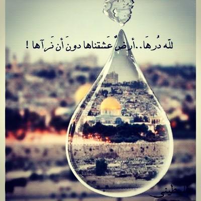 بالصور صور عن فلسطين , صور جميله معبره عن فلسطين 6590 9