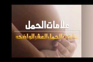 صورة كيف اعرف اني حامل قبل الدورة , علامات الحمل قبل معاد الدوره الشهريه