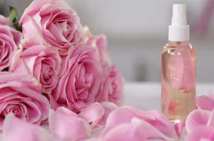 بالصور فوائد ماء الورد , لماء الورد فوائد عديده تعرفوا عنها 6704 3 310x205