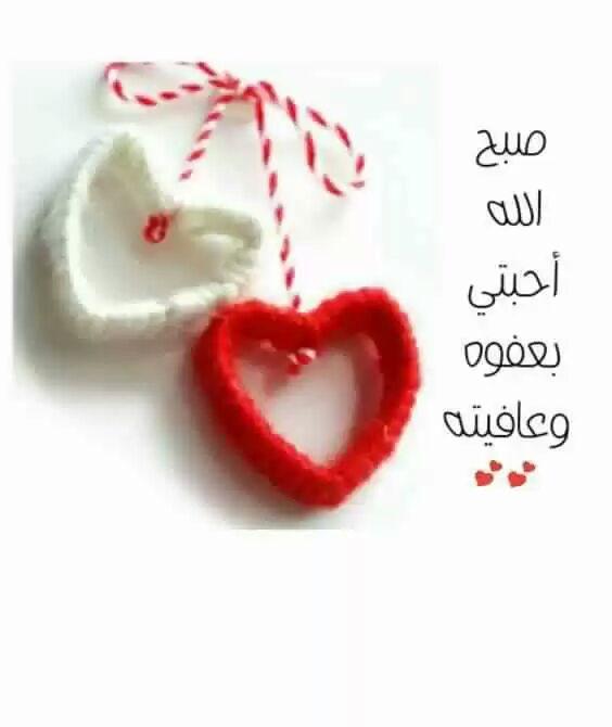 بالصور صباح الورد حبيبتي , اجمل صباح الورد للحبيبه 6731 2
