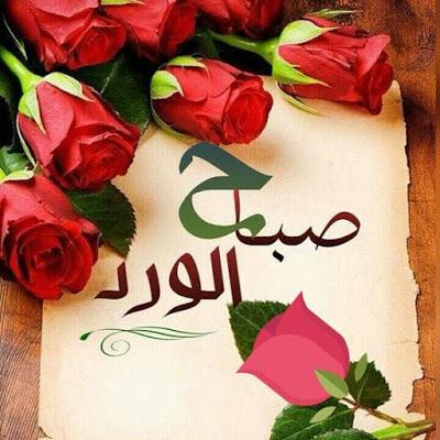بالصور صباح الورد حبيبتي , اجمل صباح الورد للحبيبه 6731 3