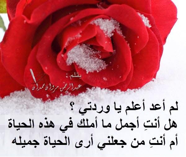 بالصور صباح الورد حبيبتي , اجمل صباح الورد للحبيبه 6731 5
