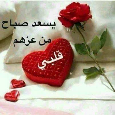 بالصور صباح الورد حبيبتي , اجمل صباح الورد للحبيبه 6731 6
