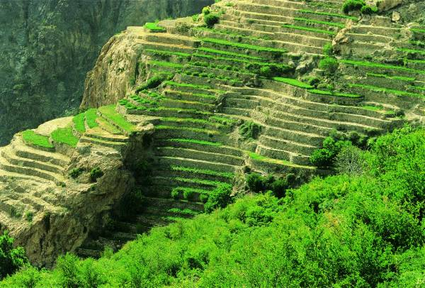 بالصور صور من اليمن , صور جميله ومميزه من اليمن 6732 11