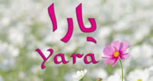صوره معنى اسم يارا , صور ومعنى وصفات من تحمل اسم يارا