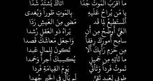 بالصور شعر عن الموت , هكذا تحدث الشعراء عن الموت ووحشة فراق الاهل 2839 10 310x165