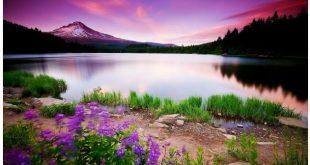 بالصور خلفيات مناظر طبيعية , شاهد اجمل خلفيات مناظر طبيعية 397 11 310x165