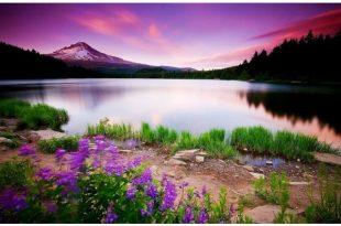 بالصور خلفيات مناظر طبيعية , شاهد اجمل خلفيات مناظر طبيعية 397 11 310x205