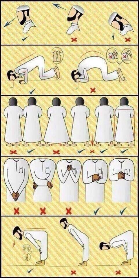 بالصور كيفية الصلاة الصحيحة بالصور للنساء , تعلمي الطريقة الصحيحة التي تقبل بها الصلاة بالخطوات المصورة 573 4