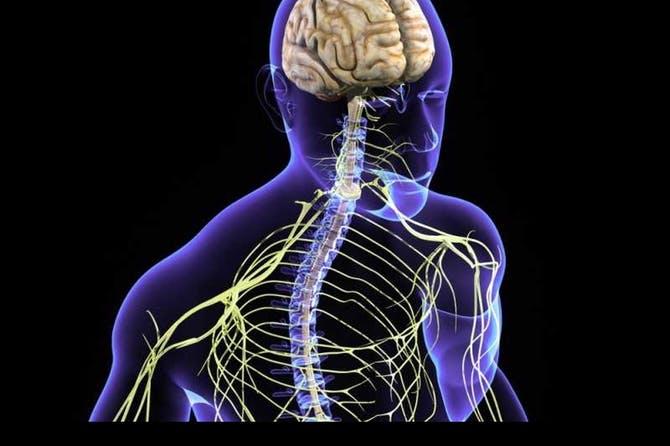 بالصور علاج الاعصاب , اسباب واعراض ضعف الاعصاب وطرق الوقاية والعلاج 2937