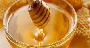 بالصور كيف تعرف العسل الاصلي , خمس طرق بسيطة لاكتشاف العسل المغشوش 534 4 310x165