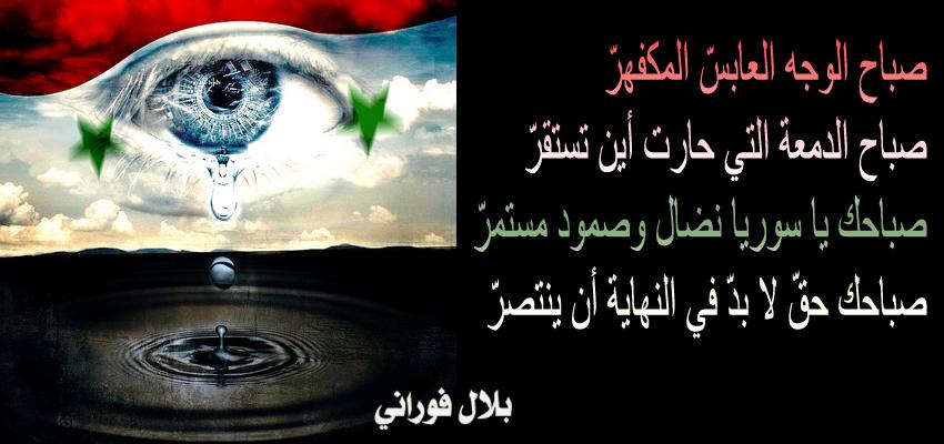 بالصور صور مكتوب عليها سوريا , صور عن سوريا الحبيبة 13425 8