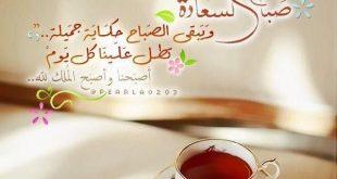 بالصور شعر صباح الخير للحبيب , كلام صباحي رقيق 13715 11 310x165