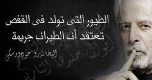 صورة اقوال وحكم عن الحرية , عبارات عن حب الحرية