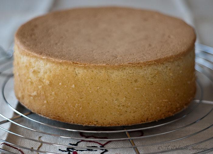 بالصور طريقة عمل الكيكة الاسفنجية سالي فؤاد , خطوات سهلة للكيك الاسفنجي 13747 9