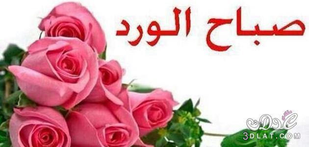 بالصور كلمة عن صباح الخير , جمل صباحية راقية 13759 1