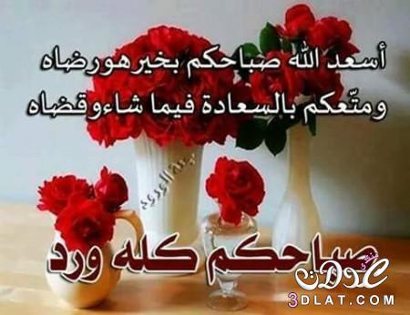 بالصور كلمة عن صباح الخير , جمل صباحية راقية 13759 8