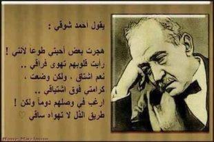 صور اقوال احمد شوقي , احمد شوقي امير الشعراء