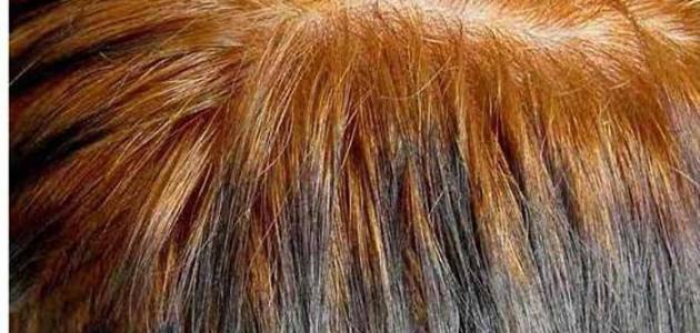 بالصور وصفة ديكاباج للشعر , كيف افتح لون شعرى 13807 1