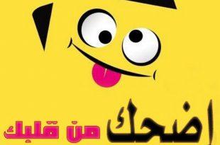 بالصور اجمل نكت ليبية , مزح علي الطريقة الليبية 13810 10 310x205