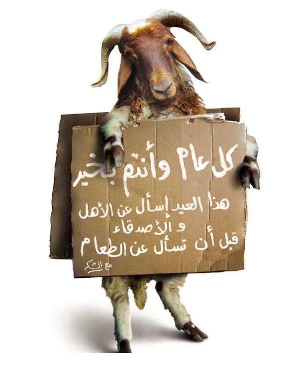 بالصور صوره عيد الاضحي , فرحة العيد الكبير 13853 4