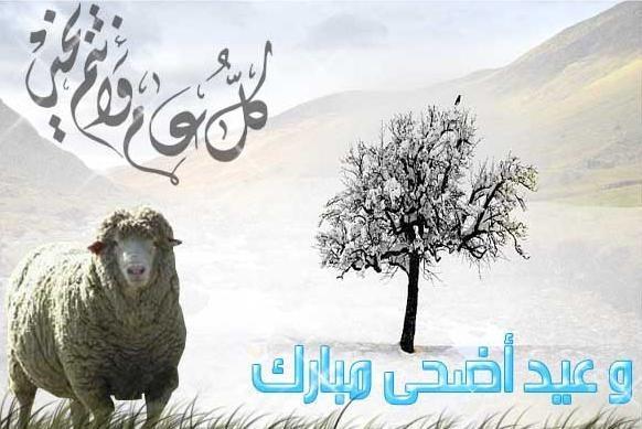 بالصور صوره عيد الاضحي , فرحة العيد الكبير 13853