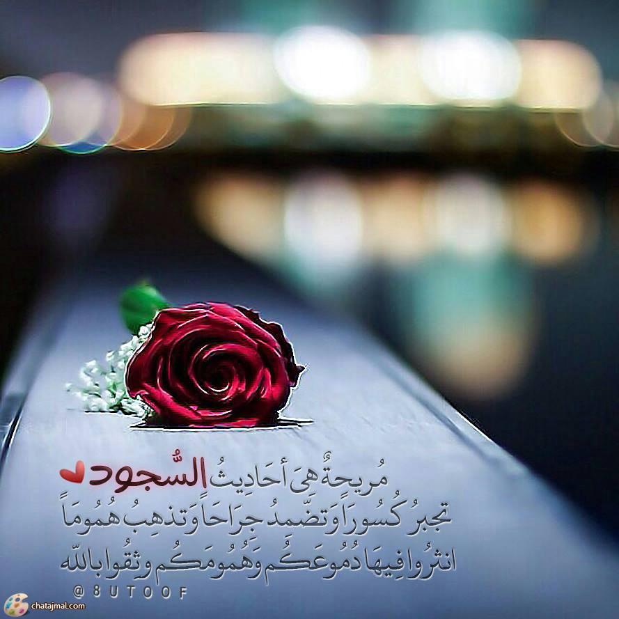 بالصور صور اسلاميه تحميل , صورة اسلامية دينية 13864 5