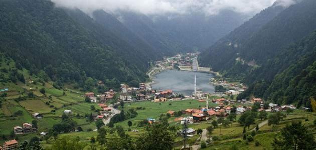 بالصور تعبير عن قريتي , موضوع عن حب القرية 13876 2